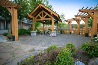 """Photo 17: 67 55 HAWTHORN Drive in Port Moody: Heritage Woods PM Townhouse for sale in """"COLBALT SKY"""" : MLS®# R2383132"""