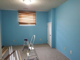 Photo 12: 5523 10 Avenue in Edmonton: Zone 29 House for sale : MLS®# E4164946