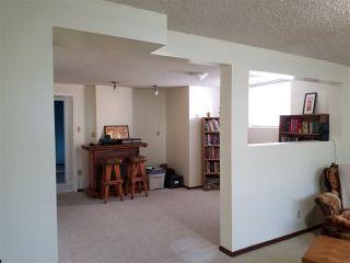 Photo 15: 5523 10 Avenue in Edmonton: Zone 29 House for sale : MLS®# E4164946