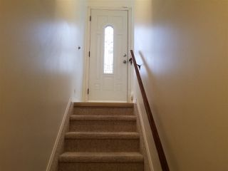 Photo 11: 5523 10 Avenue in Edmonton: Zone 29 House for sale : MLS®# E4164946