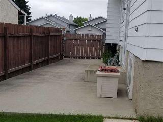 Photo 20: 5523 10 Avenue in Edmonton: Zone 29 House for sale : MLS®# E4164946