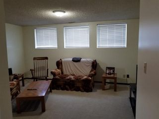Photo 14: 5523 10 Avenue in Edmonton: Zone 29 House for sale : MLS®# E4164946