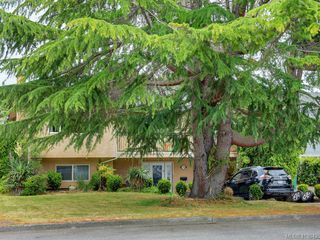 Main Photo: 1736 Kenmore Road in VICTORIA: SE Gordon Head Single Family Detached for sale (Saanich East)  : MLS®# 413642