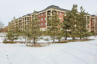 Photo 25: #337 300 Palisades Way: Sherwood Park Condo for sale : MLS®# E4180252