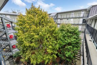Photo 16: 209 991 Cloverdale Ave in : SE Quadra Condo for sale (Saanich East)  : MLS®# 862557