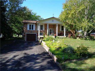 Photo 1: 16 South Island Trail in Ramara: Rural Ramara House (Bungalow-Raised) for sale : MLS®# X3361490