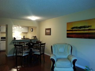 Photo 6: 10 340 GINGER Drive in New Westminster: Fraserview NW Townhouse for sale : MLS®# R2041154