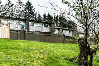"Photo 18: 5 20939 CAMWOOD Avenue in Maple Ridge: Southwest Maple Ridge Townhouse for sale in ""CAMWOOD GARDENS"" : MLS®# R2157397"