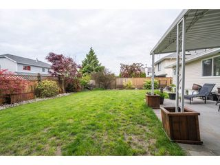 Photo 18: 20440 WALNUT Crescent in Maple Ridge: Southwest Maple Ridge House for sale : MLS®# R2164785