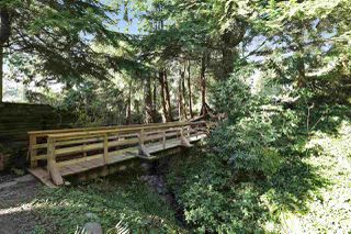 "Photo 16: 901 FOREST HILLS Drive in North Vancouver: Edgemont House for sale in ""Edgemont Village"" : MLS®# R2202646"