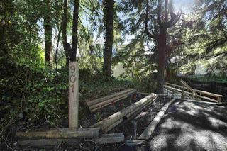 "Photo 20: 901 FOREST HILLS Drive in North Vancouver: Edgemont House for sale in ""Edgemont Village"" : MLS®# R2202646"