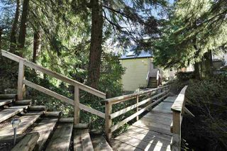 "Photo 17: 901 FOREST HILLS Drive in North Vancouver: Edgemont House for sale in ""Edgemont Village"" : MLS®# R2202646"
