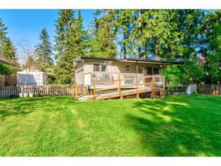"""Photo 14: 23366 FRANCIS Avenue in Langley: Fort Langley House for sale in """"Fort Langley"""" : MLS®# R2261636"""