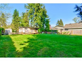 """Photo 16: 23366 FRANCIS Avenue in Langley: Fort Langley House for sale in """"Fort Langley"""" : MLS®# R2261636"""
