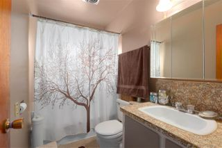 Photo 9: 744 MILLER Avenue in Coquitlam: Coquitlam West House for sale : MLS®# R2278695