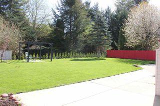 """Photo 11: 21034 RIVERVIEW Drive in Hope: Hope Kawkawa Lake House for sale in """"Kawkawa Lake"""" : MLS®# R2279825"""