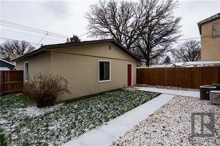 Photo 16: 276 Harrow Street in Winnipeg: Crescentwood Residential for sale (1B)  : MLS®# 1829754
