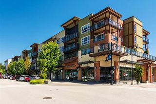 "Main Photo: 407 20728 WILLOUGHBY TOWN CENTRE Drive in Langley: Willoughby Heights Condo for sale in ""Kensington at Willoughby Town Centre"" : MLS®# R2328504"