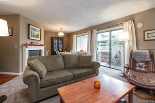 Main Photo: 109 3900 Shelbourne Street in VICTORIA: SE Cedar Hill Condo Apartment for sale (Saanich East)  : MLS®# 405656