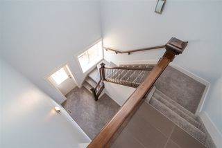 Photo 22: 10228 88 Street in Edmonton: Zone 13 House for sale : MLS®# E4149272