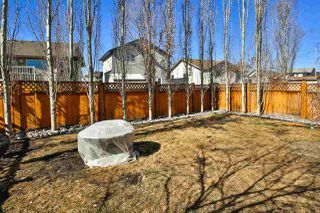 Photo 30: 19 Hilldowns Drive Drive: Spruce Grove House for sale : MLS®# E4151042