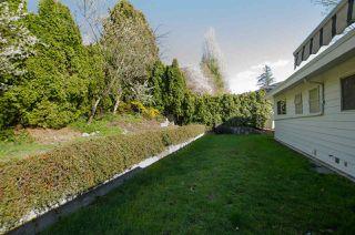 Photo 17: 10609 SANTA MONICA Drive in Delta: Nordel House for sale (N. Delta)  : MLS®# R2357819
