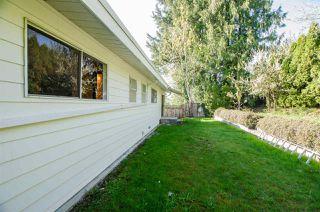 Photo 18: 10609 SANTA MONICA Drive in Delta: Nordel House for sale (N. Delta)  : MLS®# R2357819