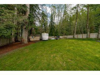 Photo 19: 2497 BERKLEY Avenue in North Vancouver: Blueridge NV House for sale : MLS®# R2361949