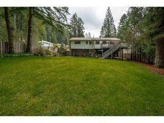 Photo 2: 2497 BERKLEY Avenue in North Vancouver: Blueridge NV House for sale : MLS®# R2361949