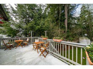 Photo 18: 2497 BERKLEY Avenue in North Vancouver: Blueridge NV House for sale : MLS®# R2361949