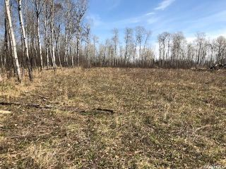 Photo 7: Wilson building acreage in Star City: Lot/Land for sale (Star City Rm No. 428)  : MLS®# SK771725