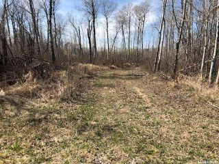 Photo 1: Wilson building acreage in Star City: Lot/Land for sale (Star City Rm No. 428)  : MLS®# SK771725