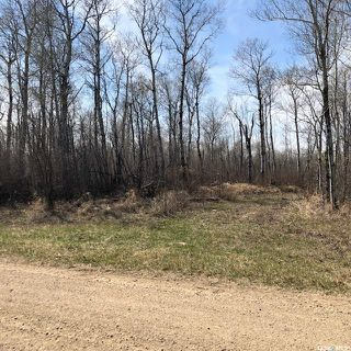 Photo 3: Wilson building acreage in Star City: Lot/Land for sale (Star City Rm No. 428)  : MLS®# SK771725
