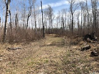 Photo 9: Wilson building acreage in Star City: Lot/Land for sale (Star City Rm No. 428)  : MLS®# SK771725