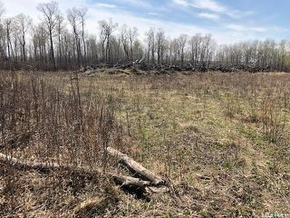 Photo 6: Wilson building acreage in Star City: Lot/Land for sale (Star City Rm No. 428)  : MLS®# SK771725