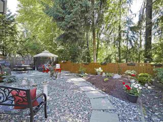 Photo 20: 2994 WALTON Avenue in Coquitlam: Canyon Springs House for sale : MLS®# R2379194