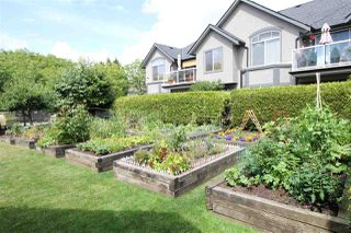 """Photo 15: 19 4740 221 Street in Langley: Murrayville Townhouse for sale in """"Eaglecrest"""" : MLS®# R2383487"""