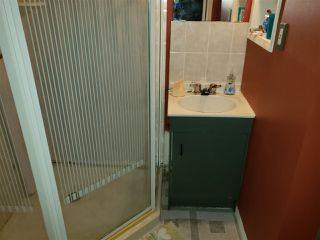 Photo 12: 13807 26 Street in Edmonton: Zone 35 House for sale : MLS®# E4170176