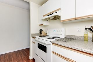 Photo 18: 808 11211 85 Street NW in Edmonton: Zone 05 Condo for sale : MLS®# E4184229