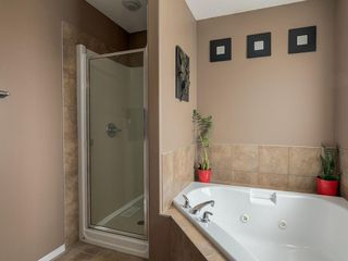 Photo 18: 254 COPPERSTONE Grove SE in Calgary: Copperfield Detached for sale : MLS®# C4292258