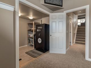 Photo 33: 254 COPPERSTONE Grove SE in Calgary: Copperfield Detached for sale : MLS®# C4292258