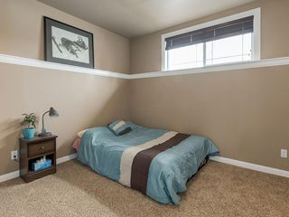 Photo 31: 254 COPPERSTONE Grove SE in Calgary: Copperfield Detached for sale : MLS®# C4292258