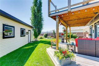 Photo 42: 254 COPPERSTONE Grove SE in Calgary: Copperfield Detached for sale : MLS®# C4292258