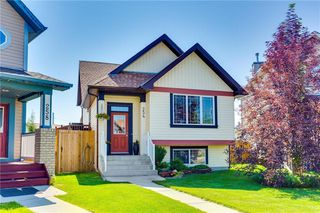 Photo 48: 254 COPPERSTONE Grove SE in Calgary: Copperfield Detached for sale : MLS®# C4292258
