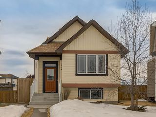 Photo 1: 254 COPPERSTONE Grove SE in Calgary: Copperfield Detached for sale : MLS®# C4292258