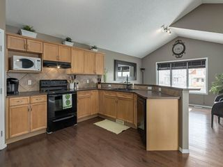 Photo 11: 254 COPPERSTONE Grove SE in Calgary: Copperfield Detached for sale : MLS®# C4292258
