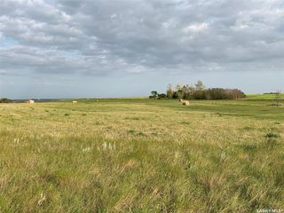 Photo 5: 36.43 ACRES - FINDLATER in Findlater: Lot/Land for sale : MLS®# SK826960