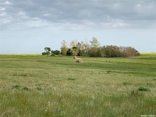 Photo 1: 36.43 ACRES - FINDLATER in Findlater: Lot/Land for sale : MLS®# SK826960