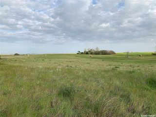 Photo 2: 36.43 ACRES - FINDLATER in Findlater: Lot/Land for sale : MLS®# SK826960