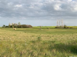 Photo 4: 36.43 ACRES - FINDLATER in Findlater: Lot/Land for sale : MLS®# SK826960